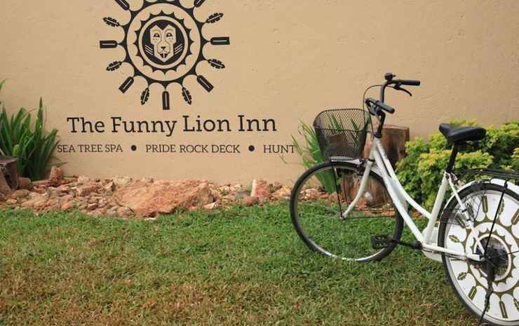 The Funny Lion Coron