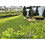 VIEW_ATTRACTIONS Green Ocean Seaview Apartment