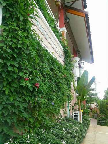 EXTERIOR_BUILDING Lampang Lanna Home