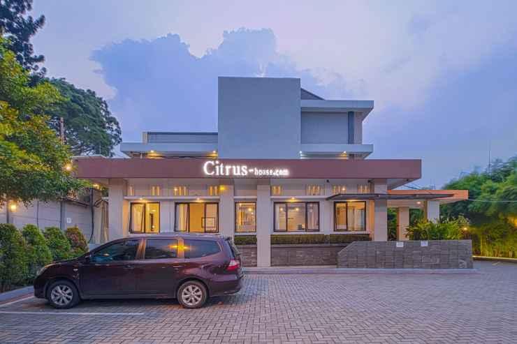 EXTERIOR_BUILDING Citrus-house