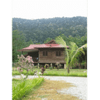 EXTERIOR_BUILDING Padimas Village Inn Langkawi