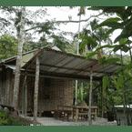 LOBBY Rain Forest Inn