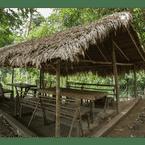 COMMON_SPACE Rain Forest Inn