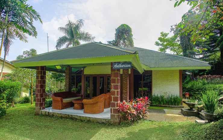 Terrace Villa Golf Bogor - Villa Deluxe 2 Kamar