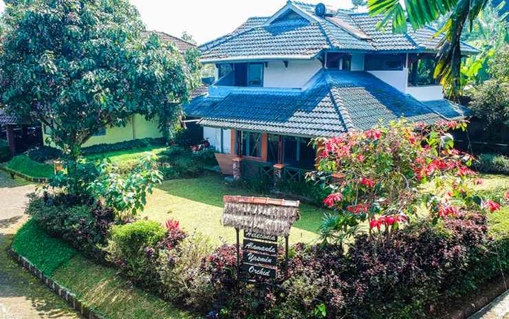 Terrace Villa Golf Bogor - Villa Superior 4 Kamar
