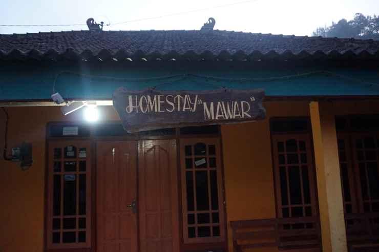 LOBBY Homestay Selo Mawar