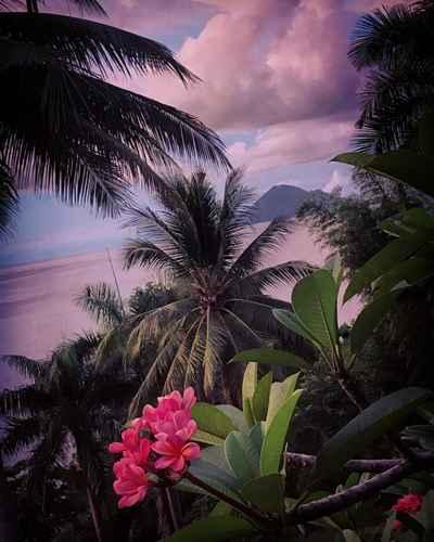 LOBBY Janji Laut Resort