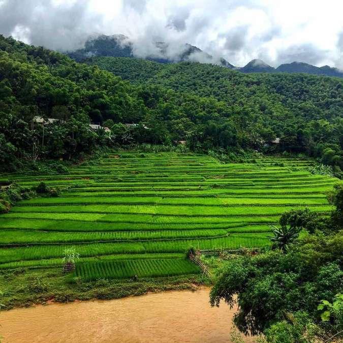 Bản Kho Mường cách trung tâm thành phố Thanh Hóa chưa đầy 150 km