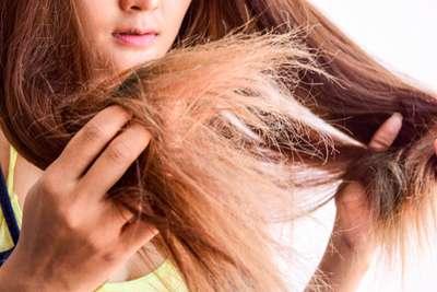 Cara Mengatasi Rambut Kering Ampuh yang Bisa Kamu Coba, Xperience Team