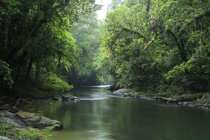 Taman Nasional Betung Kerihun, Potensi Warisan Dunia dari UNESCO, Traveloka Accomodation