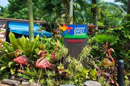 Things to Do at Jurong Bird Park, Traveloka Xperience