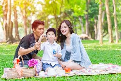 Piknik Bersama Keluarga? Persiapkan Hal Penting Ini Ya..., Haris Prahara