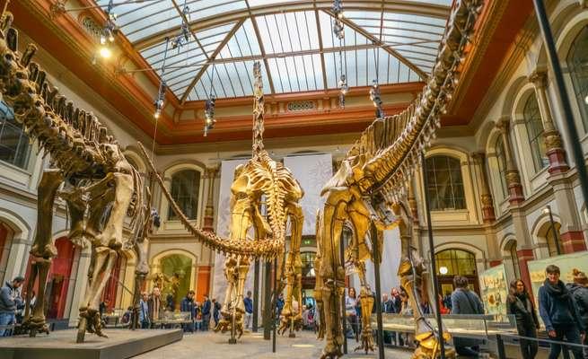 Bảo tàng lịch sử Đức