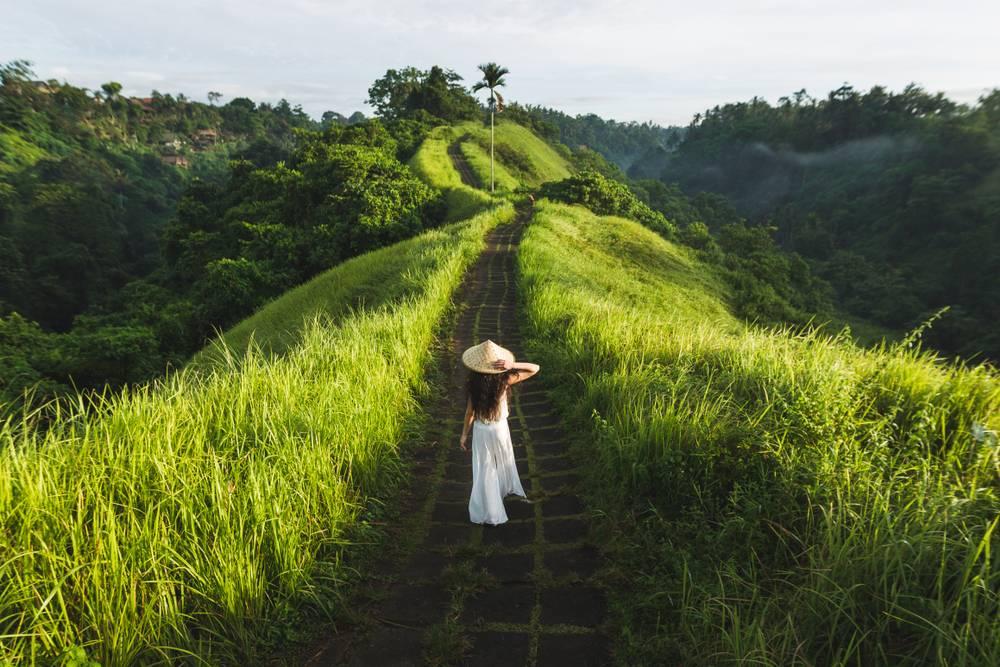 Area Persawahan di Ubud