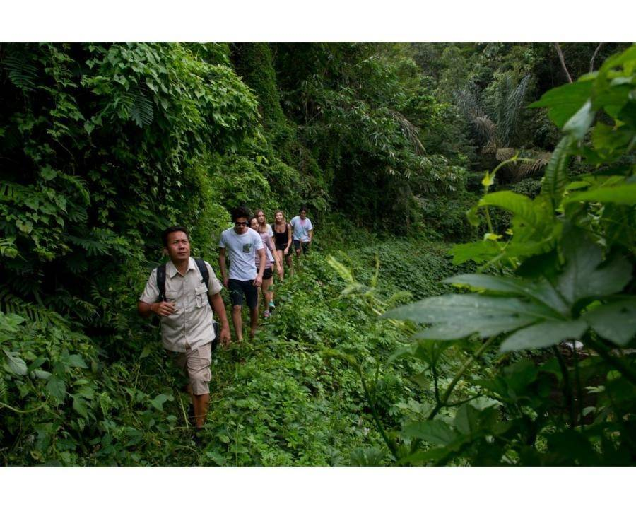 Tropical Trekking Tour