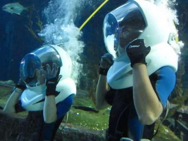 vé sea life bangkok ocean world
