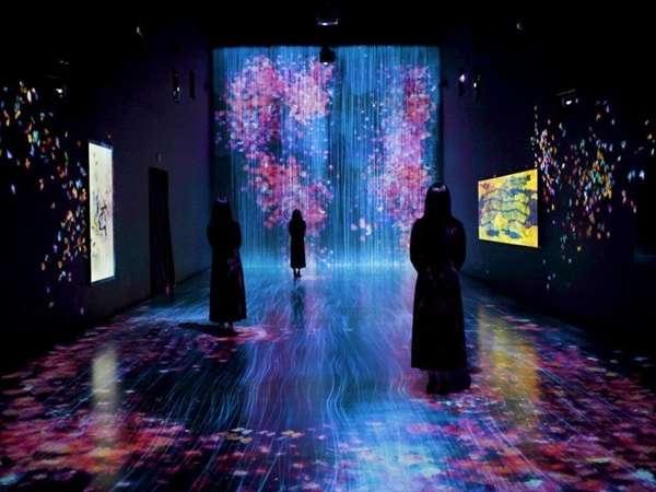artscience museum có gì
