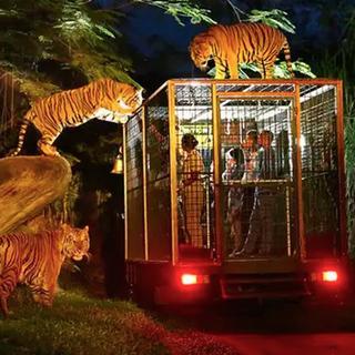 Bali Safari Park - Indonesian Resident, Starts from Rp 122.500
