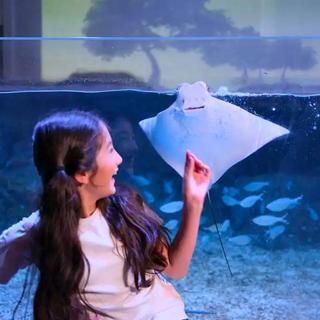 Jakarta Aquarium & Safari Tickets, Rp 225.000
