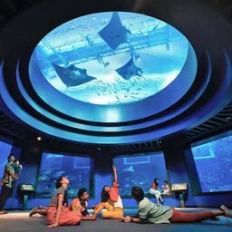 S.E.A. Aquarium™ - SingapoRediscovers Vouchers, S$ 35.00