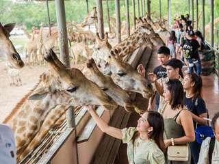 บัตรสวนสัตว์เปิดซาฟารีเวิลด์ (Safari World) กรุงเทพฯ, THB 620