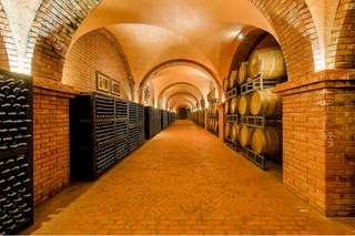 Vé lâu đài rượu vang RD Phan Thiết, VND 120.000