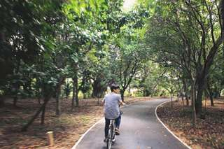 Biking in The Green Area of Bangkok (Private Experience), RM 352.80