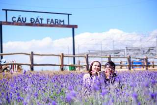 Trải nghiệm làm nông tại đồi chè Cầu Đất Farm, VND 90.000