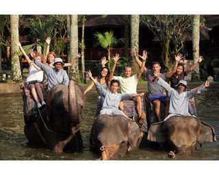 Mason Elephant Park Admission - Taro Bali, Rp 80.000