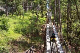 [FLASH SALE] Xe trượt New Alpine Coaster Datanla tại Đà Lạt, VND 170.000
