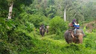 Phuket Paradise Safari Adventure Tour, RM 65.10