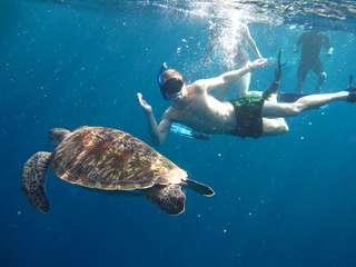 Similan Islands - 1-day Tour (by We Love Andaman), THB 1,978