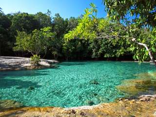 Krabi Rainforest Discovery - 1- Day Tour (by TTD), THB 890