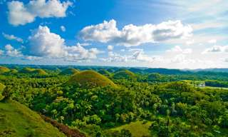 Bohol Countryside Tour with Roundtrip Ferry From Cebu - 1-Day Tour, ₱ 2,538