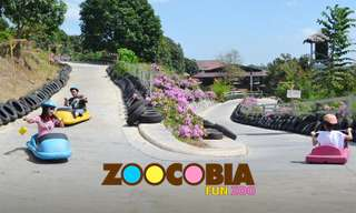 Zoocobia Fun Zoo Tickets, ₱ 236