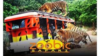 Zoobic Safari Tickets, ₱ 695