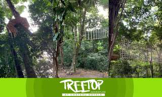 Chateau Royale Treetop Adventure Admission Tickets, ₱ 240