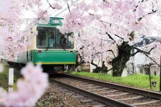 Japan Rail Pass - Nationwide (Malaysia Only) , AUD 347.12