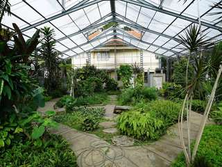 Tiket Kebun Raya Purwodadi, Rp 8.600