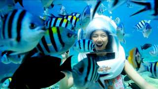 Marine Explorer by Bali Marine Walk - 6 Hours, RM 182.50
