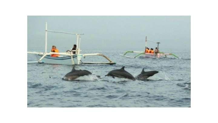 Ticket To Dolphin Lovina And Tanah Lot 1 Day Tour Traveloka Xperience