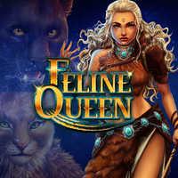 Queen Of Queens No Registration Slot