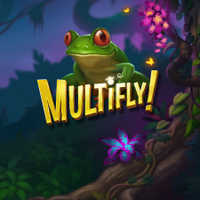Multifly!™