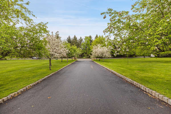FLOWERING TREE LINED DRIVEWAY
