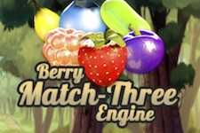Berry match