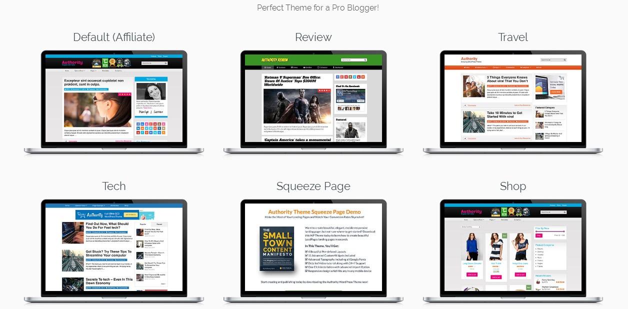 demo layouts authority wordpress theme