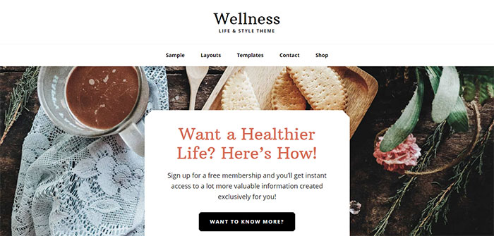 Wellness Pro Genesis Child Theme