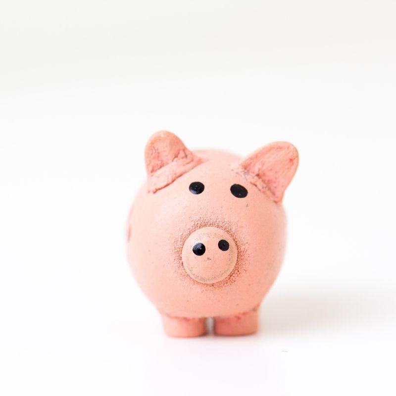 trading online voucher webinars october 2020 piggy bank