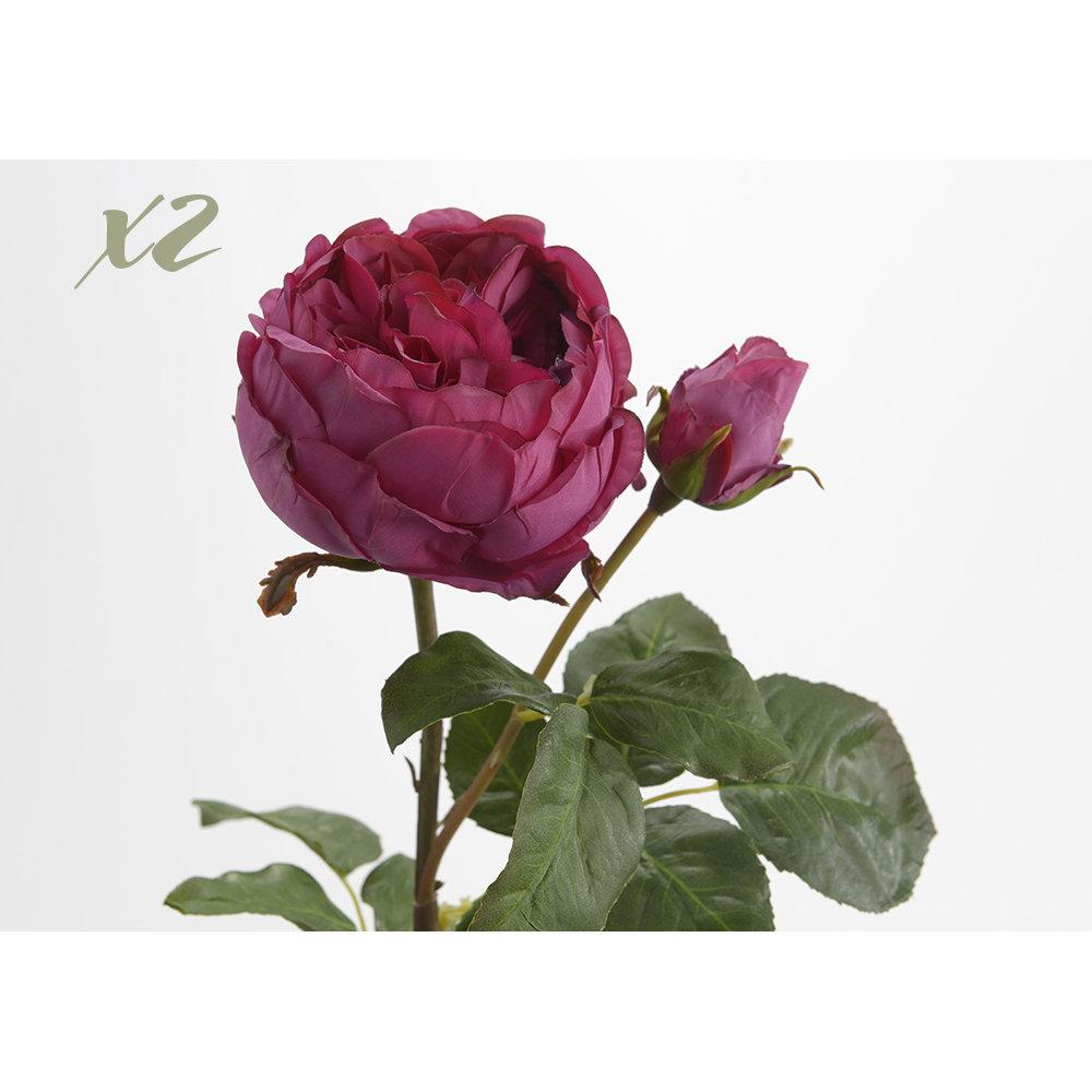 Set 2 fiori ornamentali rosa black design for Fiori ornamentali