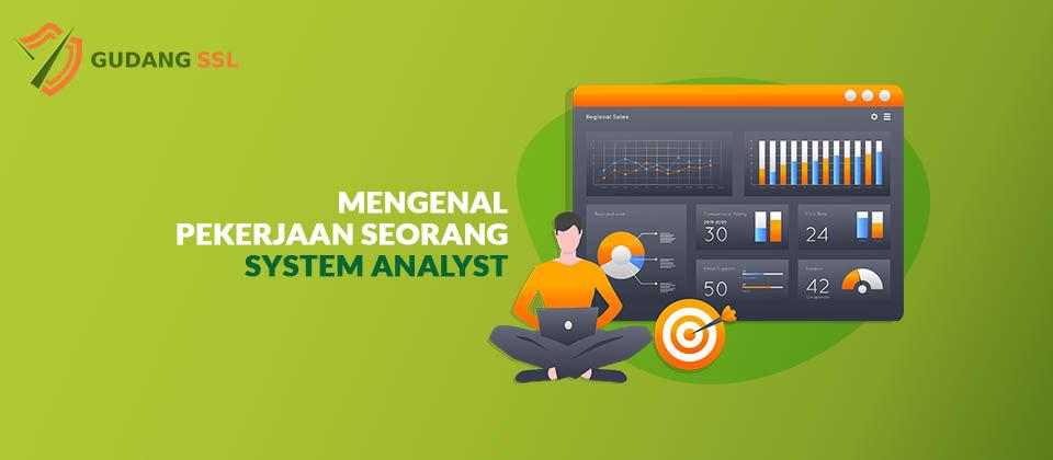 Pekerjaan Seorang System Analyst